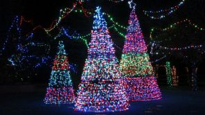 The annual Zoolight Safari is Dec. 8-10, 15-23 and 26-31 from 5 p.m. until 9 p.m. at the Birmingham Zoo. (Contributed)